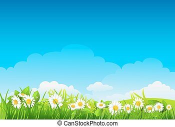 Summer background with flowers