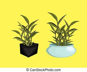 Houseplant Bamboo Pot Vector Illustration
