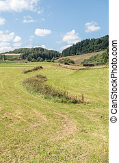 Rolling landscape with meadows. - Rolling landscape with...