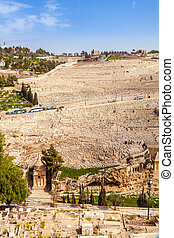 Mount of Olives and the old Jewish cemetery in Jerusalem,...