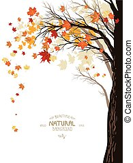 Autumn background with tree - Autumn background with the...