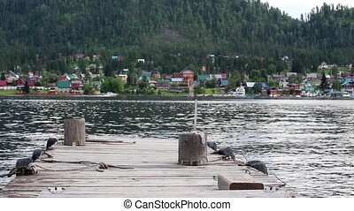 view from the pier on the lake in the summer