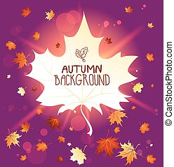 Wonderful autumn background with place for text