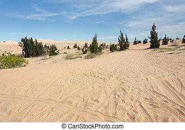 white sand dune desert in Mui Ne, Vietnam - wheel track on...