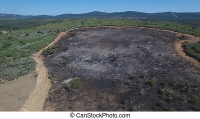 Firebreak around burnt area, flying camera - Aerial view of...