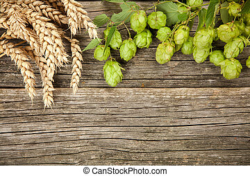 Malt and hops - beer brewing ingredients