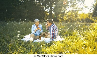 Seniors in nature sitting on a blanket, having picnic -...