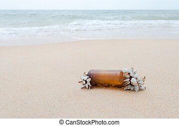 Nature fight against coast and sea pollution. Mollusks grow...