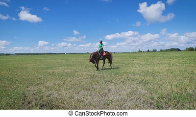 Young woman riding a horse on the green field. Walking fast....