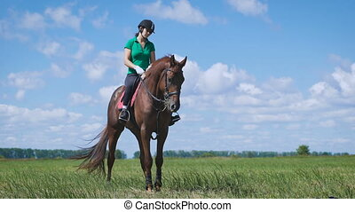 Young woman riding a horse on the green field. A young...