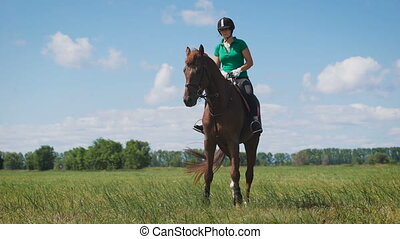 Young woman riding a horse on the green field. A young lady,...