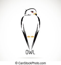 Vector of owl on white background.