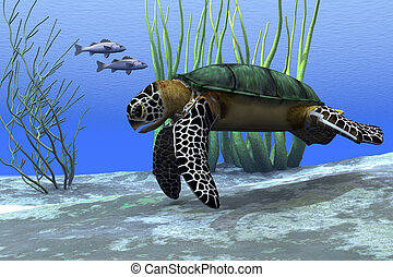 SEA TURTLE - A sea turtle makes its way along the bottom of...