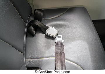 avión, asiento, cinturón