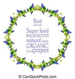 Blue grape frame