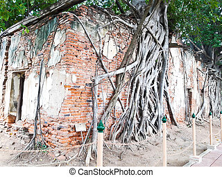 Ancient Thai Church at Sang Kratai Temple, Thailand,Roots on...