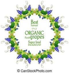 Super grape