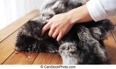 woman folding faux fur jacket on table at home - clothing,...