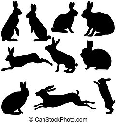 rabbit silhouettes on the white background, vector...