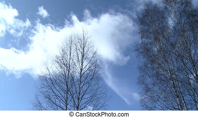 Sky landscape in Russia - Sky landscape in winter Russia