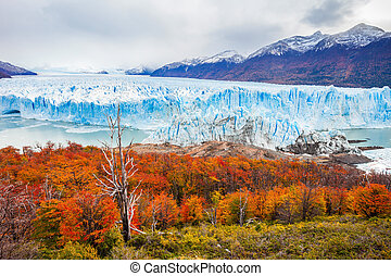 The Perito Moreno Glacier is a glacier located in the Los...