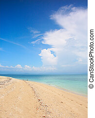 Low Isles - Queensland, Australia - Beach on the Low Isles...