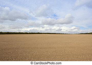 cultivated chalky soil in autumn - a cultivated field with...