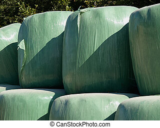 Bales of hay wrapped in plastic - Bales of hay wrapped in...