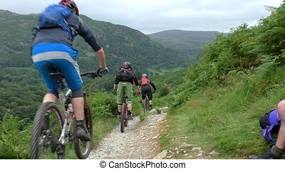 Group mountain bikers riding trail