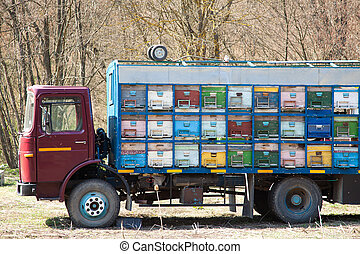 Truck with beehives - Colorful truck filled with beehives in...