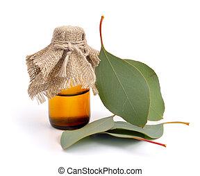 Eucalyptus leaves with pharmaceutical bottle.