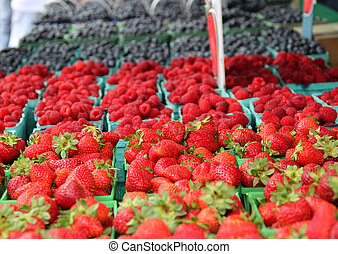 Rows of berries at Market