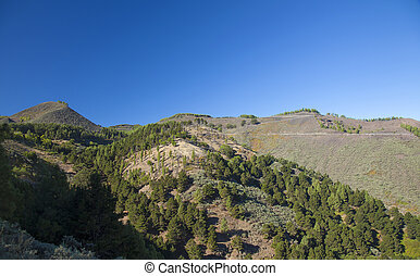 Central Gran Canaria, view north east towards old volcanic...