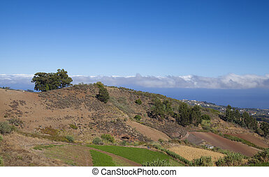 Central Gran Canaria, view north east over agricultural...