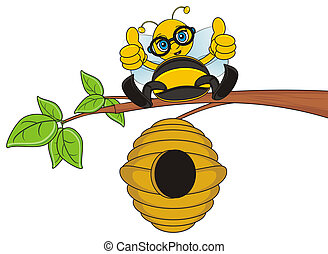 bee sit on the branch - bee sitting on the branch and show...