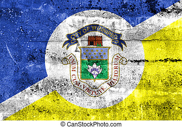 Flag of Winnipeg, Manitoba, Canada, painted on dirty wall