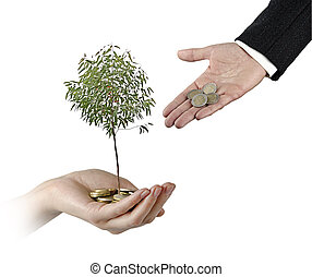 inversión, verde, empresa / negocio