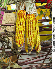Three corns on fence in a rural background