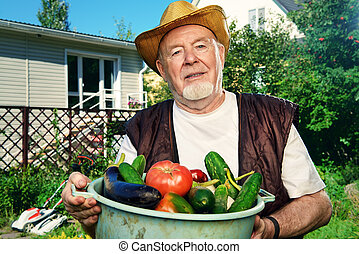 tomatoes and cucumbers - Smiling senior man with his harvest...