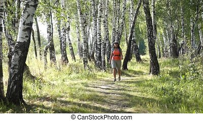 Young woman trekking in a birch wood, exploring the trekking...