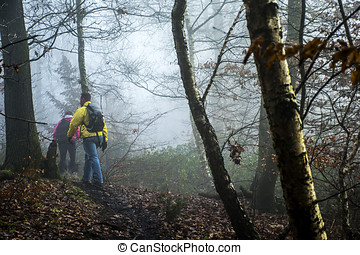 Hiking in the wood on a foggy day nature 2 - Hiking with...