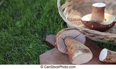Mushrooms Basket On Lawn - Closeup of basket with fresh...