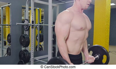 Muscular man working out in gym doing exercises with barbell...