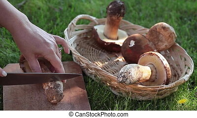 Cleaning Porcini Mushrooms - Cleaning fresh porcini...