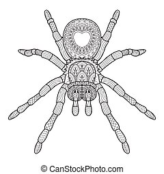 Hand draw of spider in Zentangle style. vector illustration....
