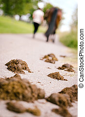 Woman and Horse on the road, droppings of horse in the front...
