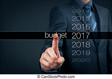 Budget for year 2017 - Businessman (accountant, financial...