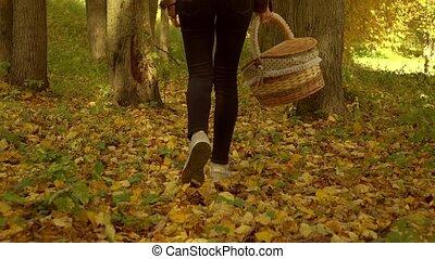 Slender girl walking on fallen leaves through autumn forest...
