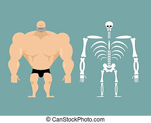 human structure. Skeleton men. construction of athlete....