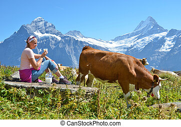 Girl with a jug of milk and a cow. Jungfrau region,...